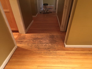 wood floor sanding, wood flooring in burlington_MA, wood floor refinishing, marks master service