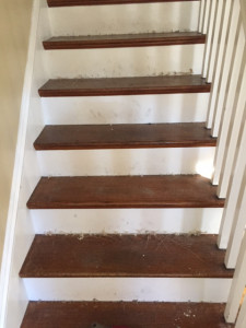 wood floor refinishing, carpet removal, stair staining, carpet removal, wood floor sanding, weston_ma, marksmasterservice