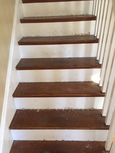 Wood Stair Staining Sanding In Weston Ma
